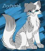 Guess wat guys Ivypool in my warrior cat game is m...