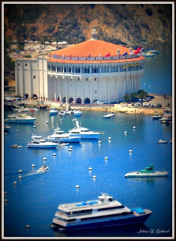Avalon, Santa Catalina Island, CA. I can't believe...