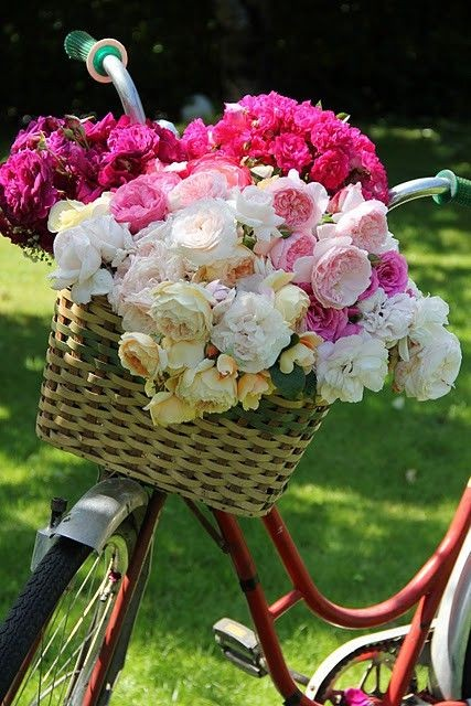 A pretty basket filled full of an old variety of E...
