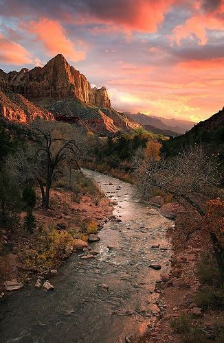 The Watchman Mountain  Hiking Trail, Zion National...