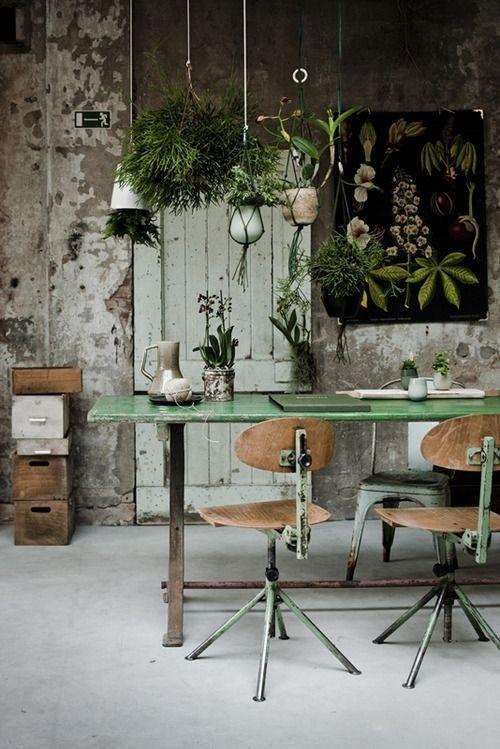 vase, green, nature, ceramics, plant, interior des...