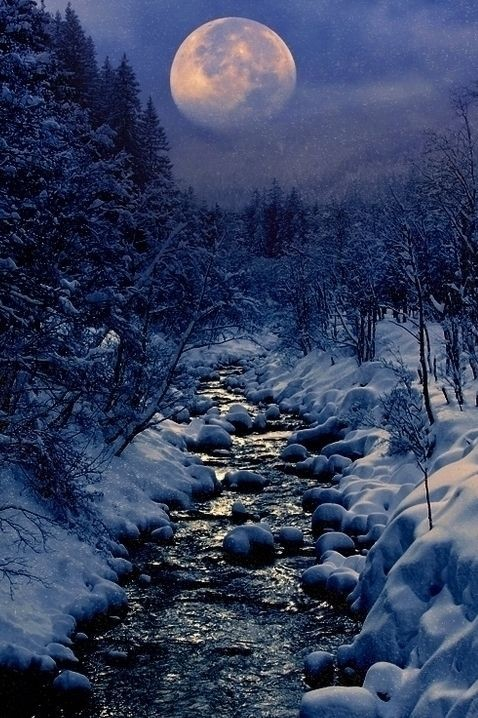 Kingdom Of The Ocean - heaven-ly-mind: Winter Cree...
