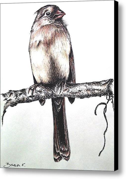 Cardinal Female Canvas Print / Canvas Art By Katha...