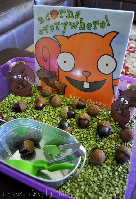 Sensory Bin for Book, Acorns Everywhere by Kevin S...