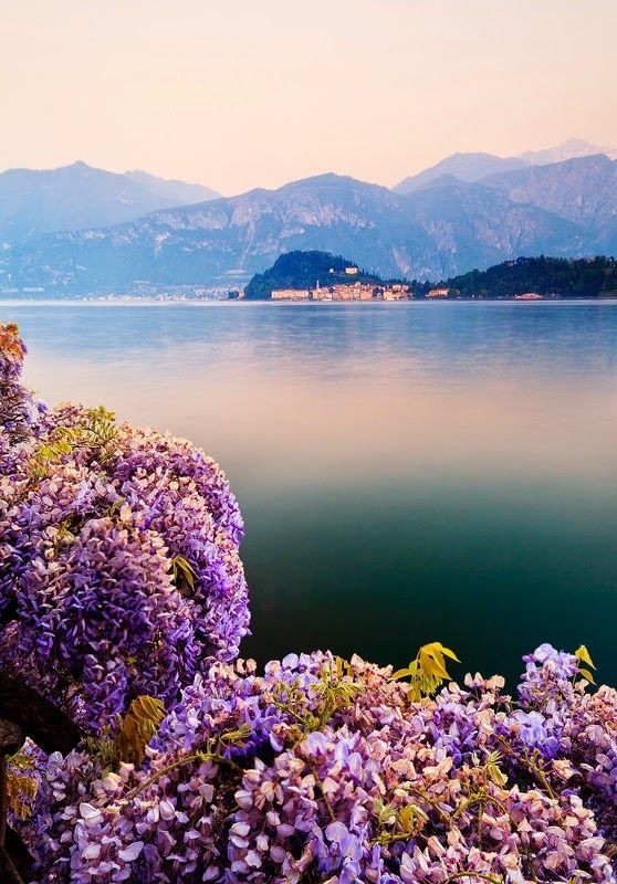 Amazing Stuffz: Perfection in Nature  Lake Como, I...