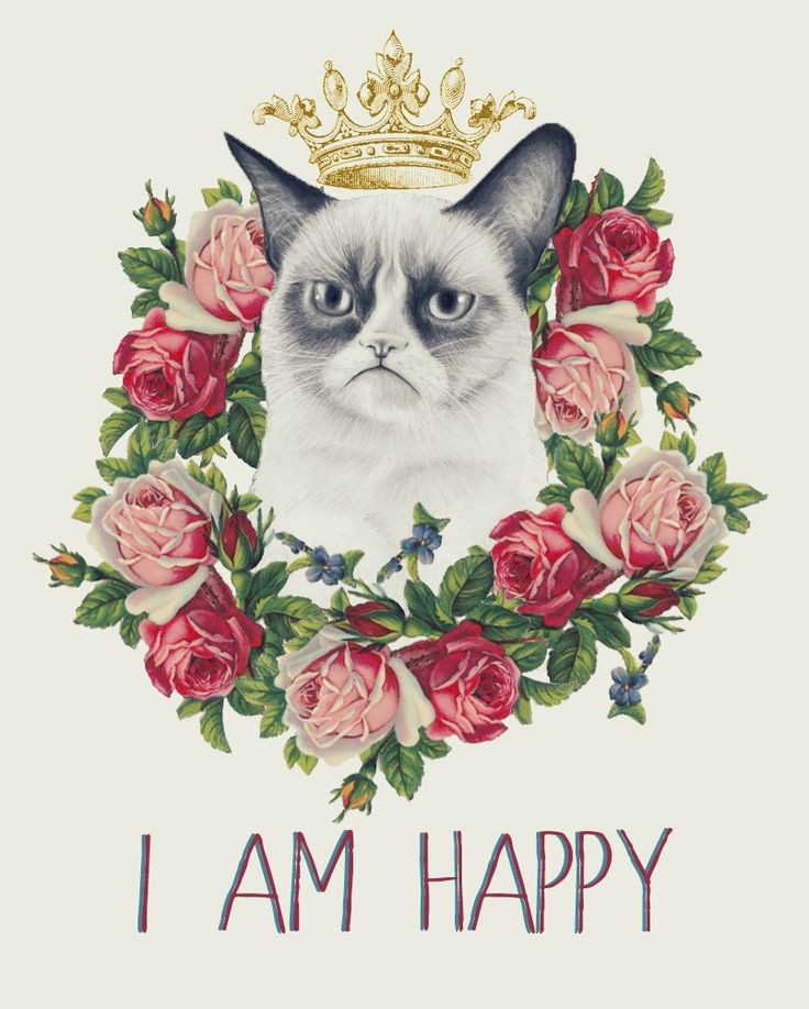 Yes. Yes I am. The crown is acceptable. #GrumpyCat...
