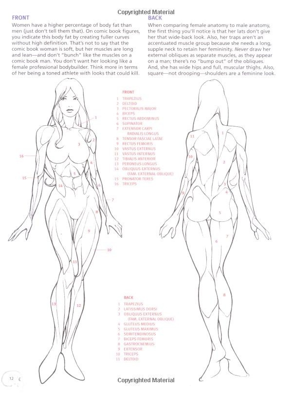 Drawing Cutting Edge Anatomy: The Ultimate Referen...