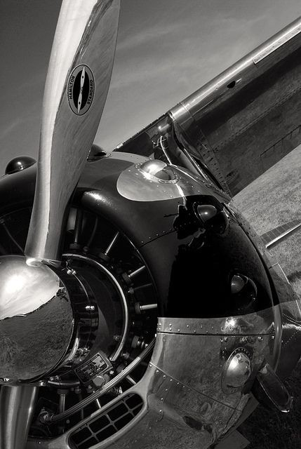 Take a plane ride just for fun | Cessna 195