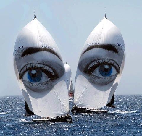 sailboat - I've got eyes for you