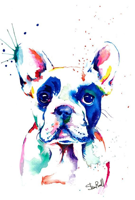 If you love Frenchies like I do, youll like this p...