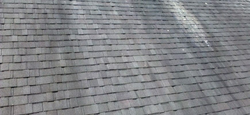 Searching for the best roof cleaning in Fort Myers...