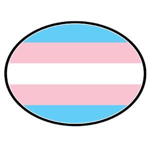 Transgender Flag - Transgender Pride LGBT Flag - O...