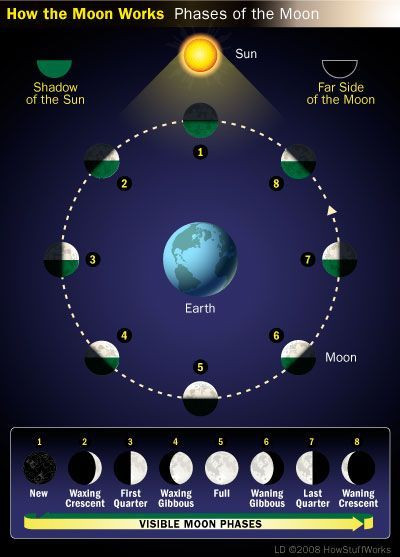 How the Moon Works