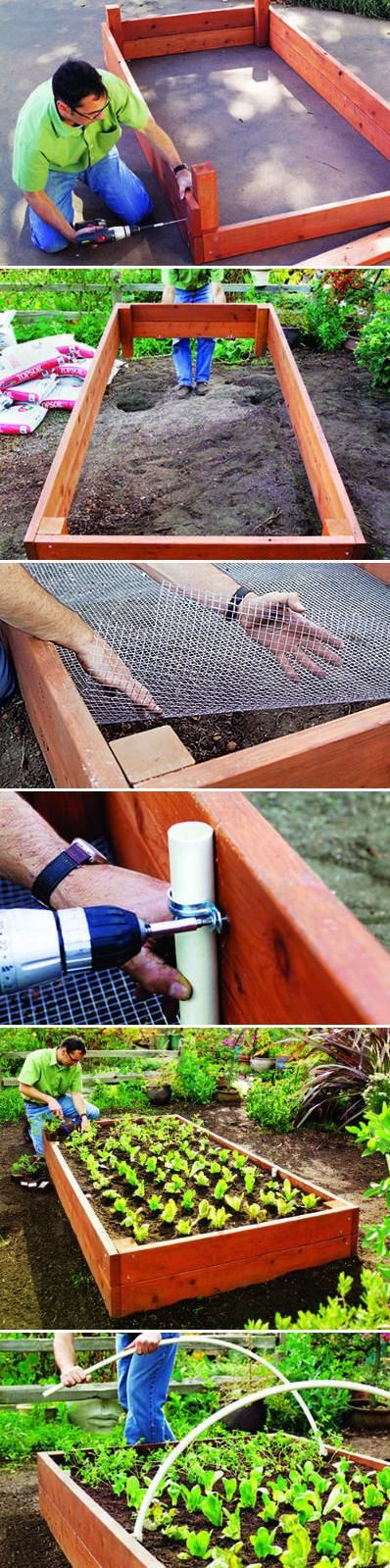 Raised Garden Bed: Easy DIY Steps to Build an Elev...