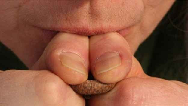 Use an acorn cap to loudly whistle for help if you...