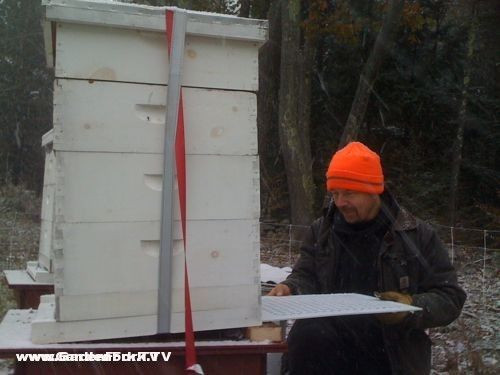 preparing-beehives-for-winter-3