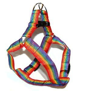 Gay Pride Rainbow Pet Harness (Cats / Small Dogs)...