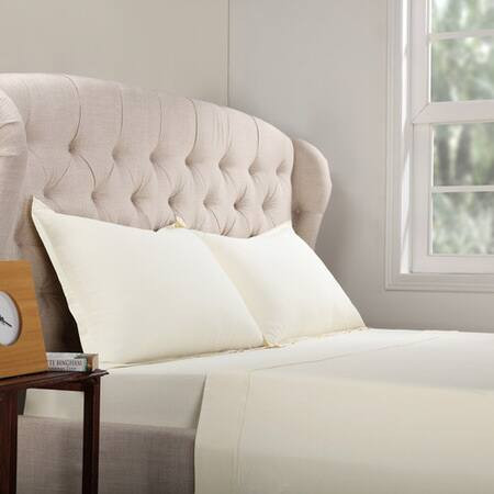 Cotton Ivory Bed Sheet Set