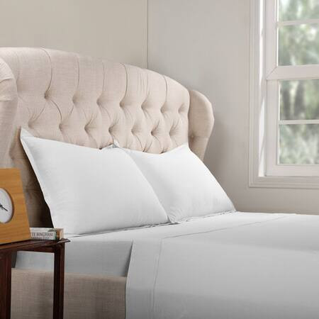 Cotton White Bed Sheet Set