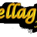 bellagiofloristetc